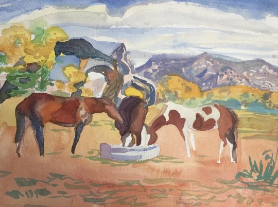 Horses from Abiquiu